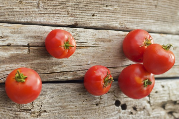 Historia del tomate