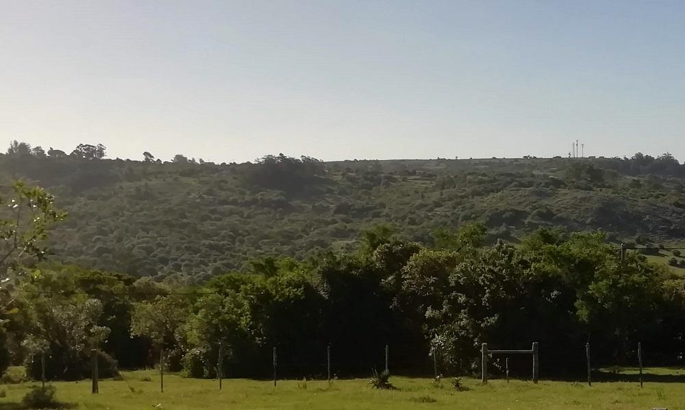 Cerro Guazubirá